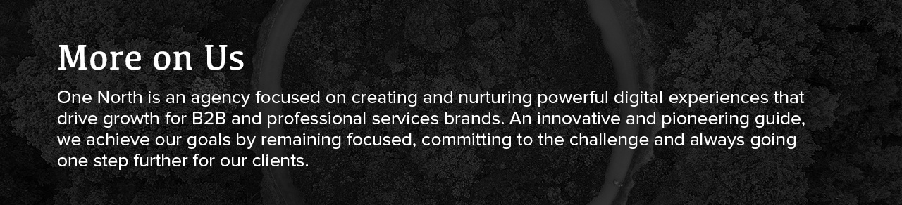 One North - digital agency for professional services